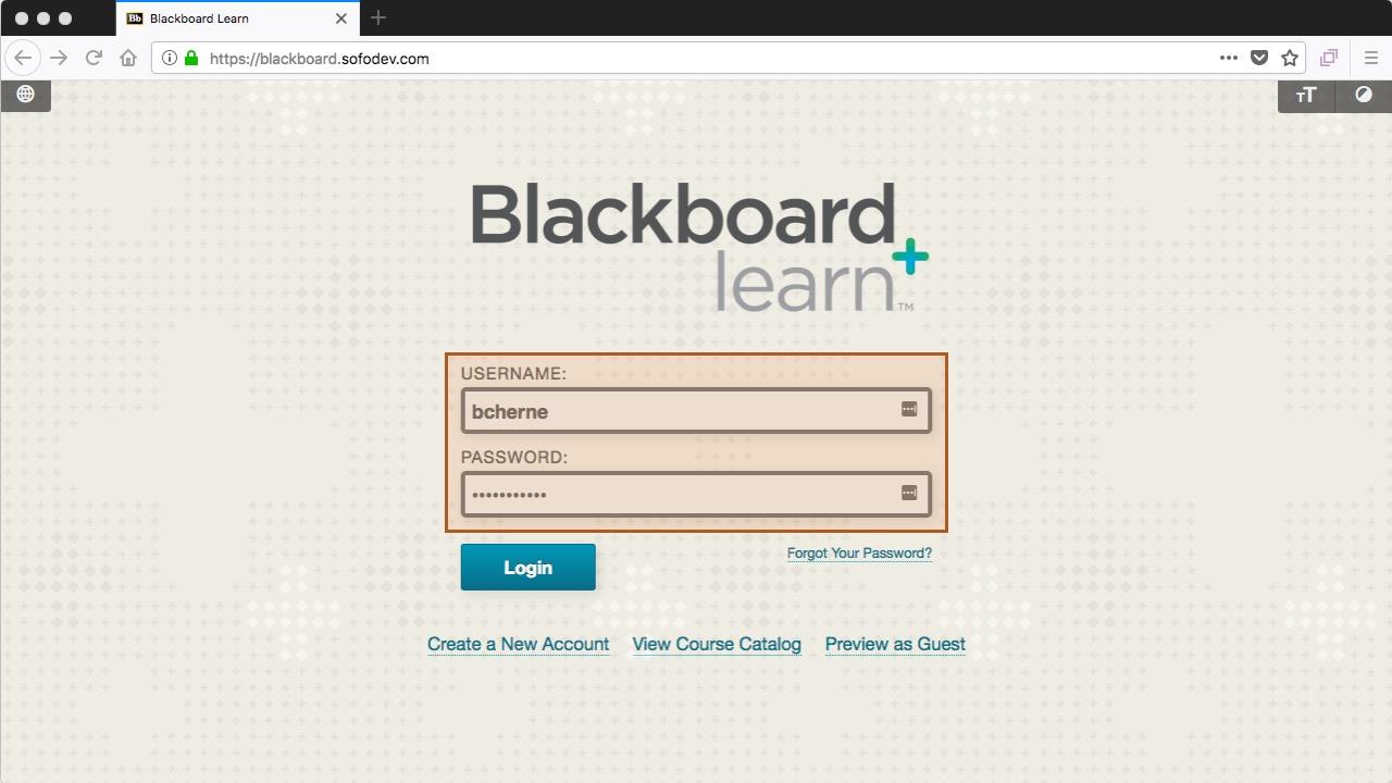 blackboard - enter username and password